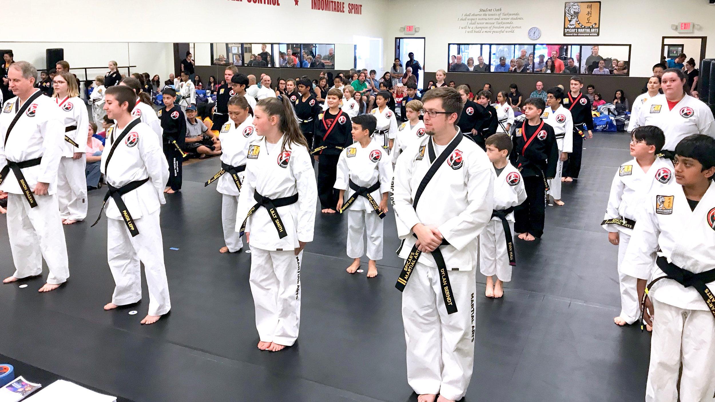 southlake-spicars-martial-arts-student-oath.jpeg