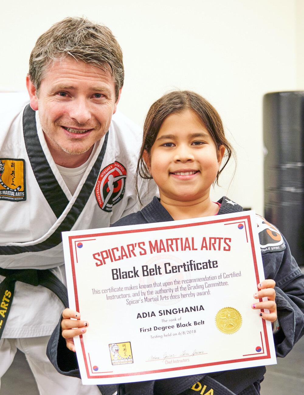 Vs belts karate taekwondo A beginner's