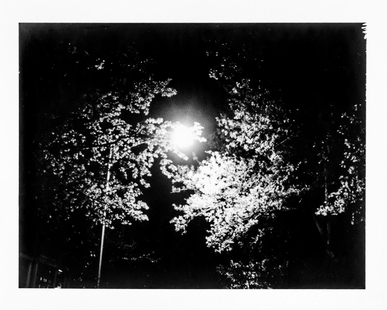 20130509_night_night_03.jpg