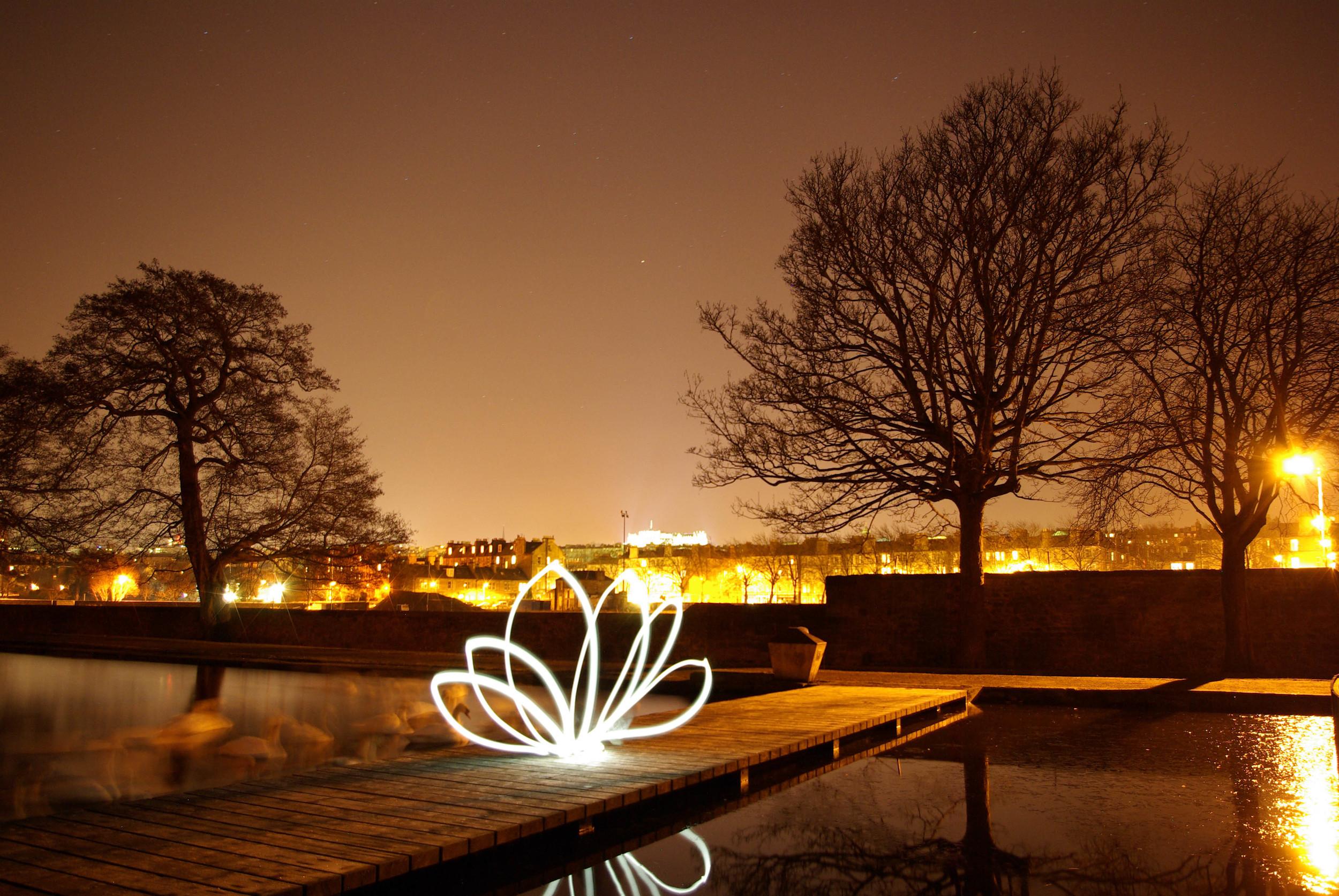 flower light.jpg