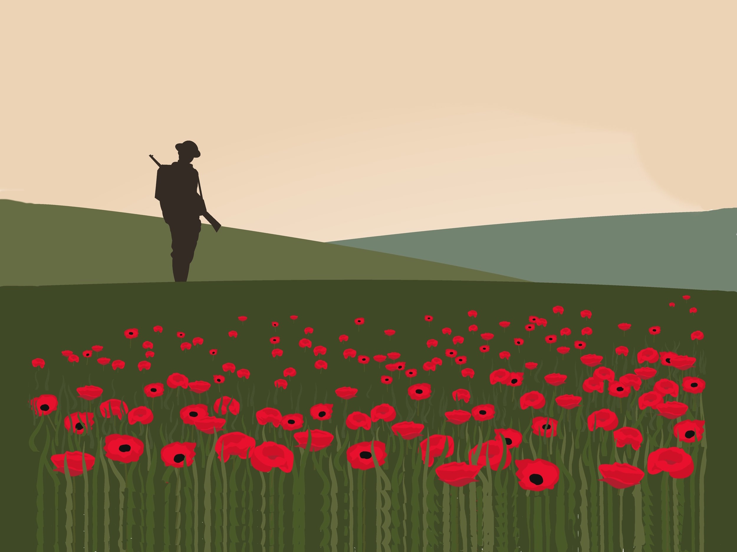 Image result for world war i poppies