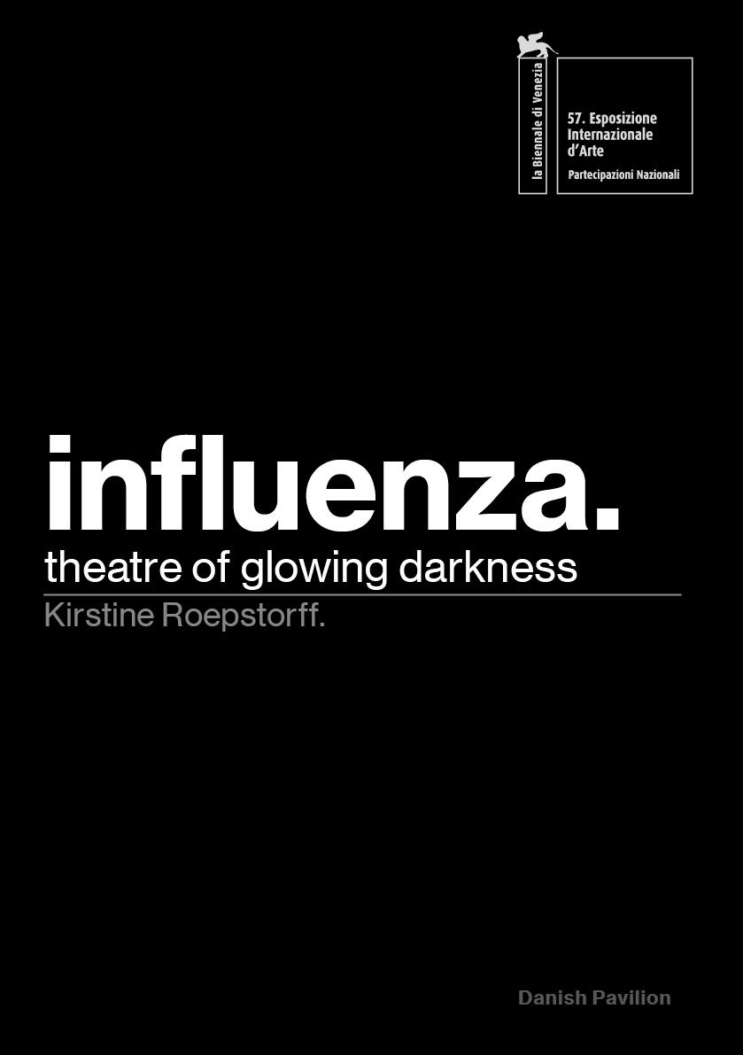 Influenza pamphlet.jpg