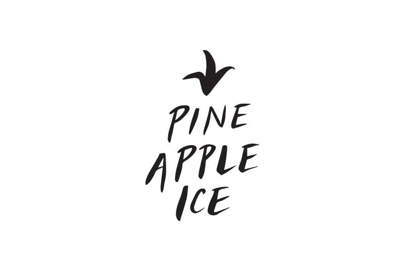 PI_Logo_2.jpg