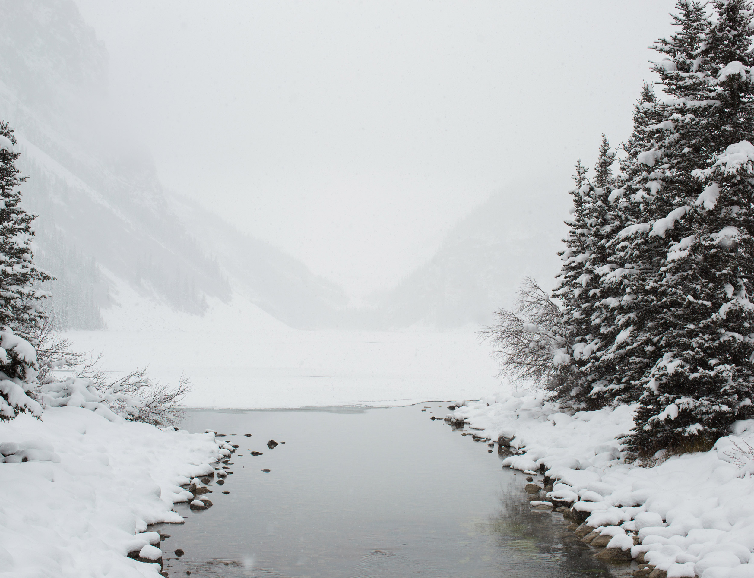 003-lake_louise_elopement.jpg