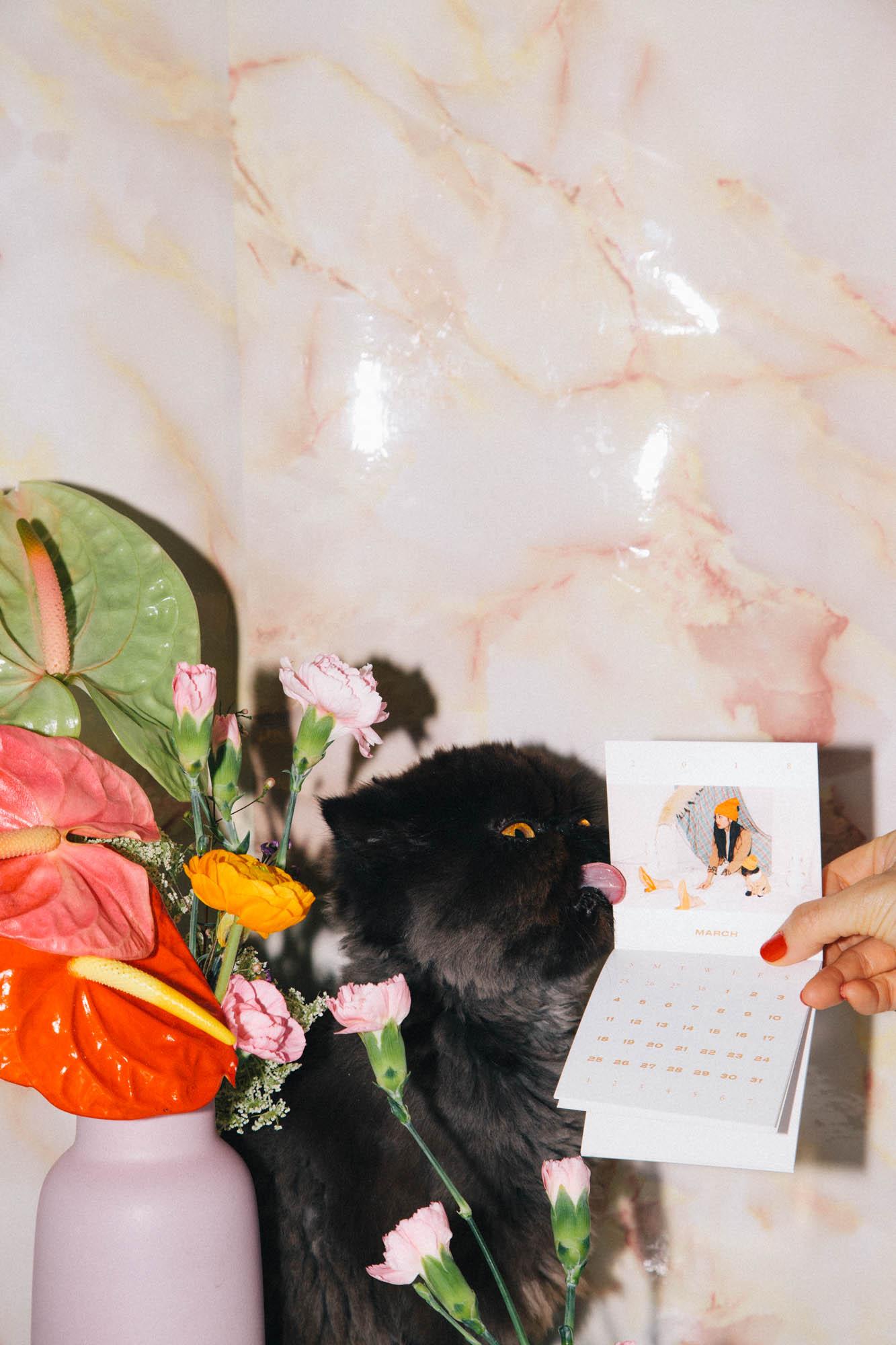 IMG_6837-cat-calendar-puno-goodsgang-krizia-2018-3.jpg
