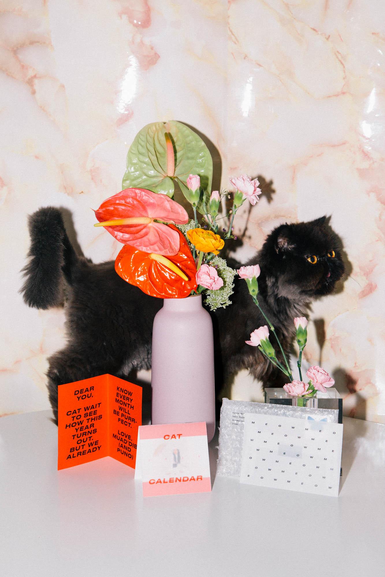 IMG_6796-cat-calendar-puno-goodsgang-krizia-2018-3.jpg
