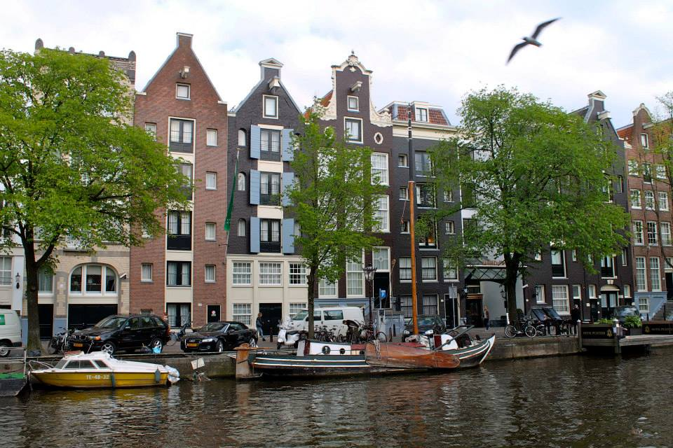 How Dutch!