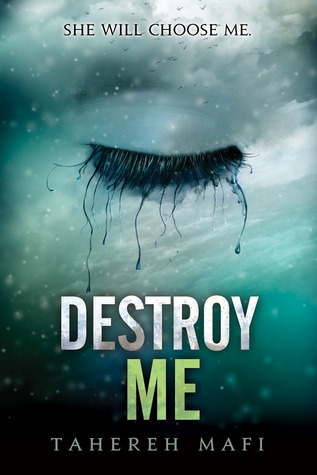 Destroy Me by Tarereh Mafi