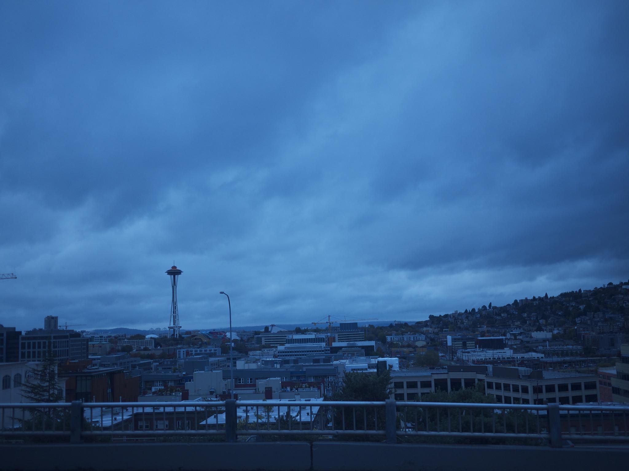 Seattle is pretty. FYI.
