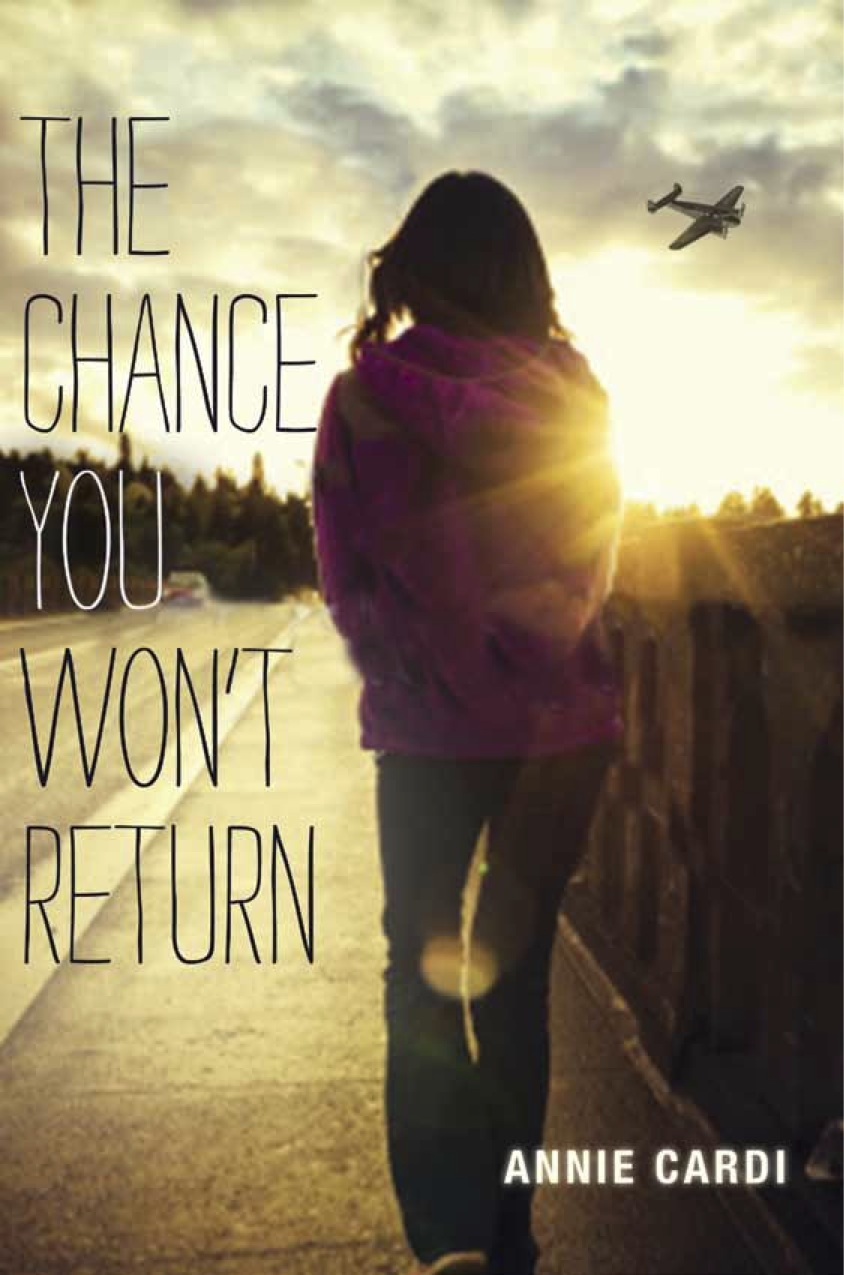 The Chance You Won't Return by Annie Cardi  Amazon     Goodreads