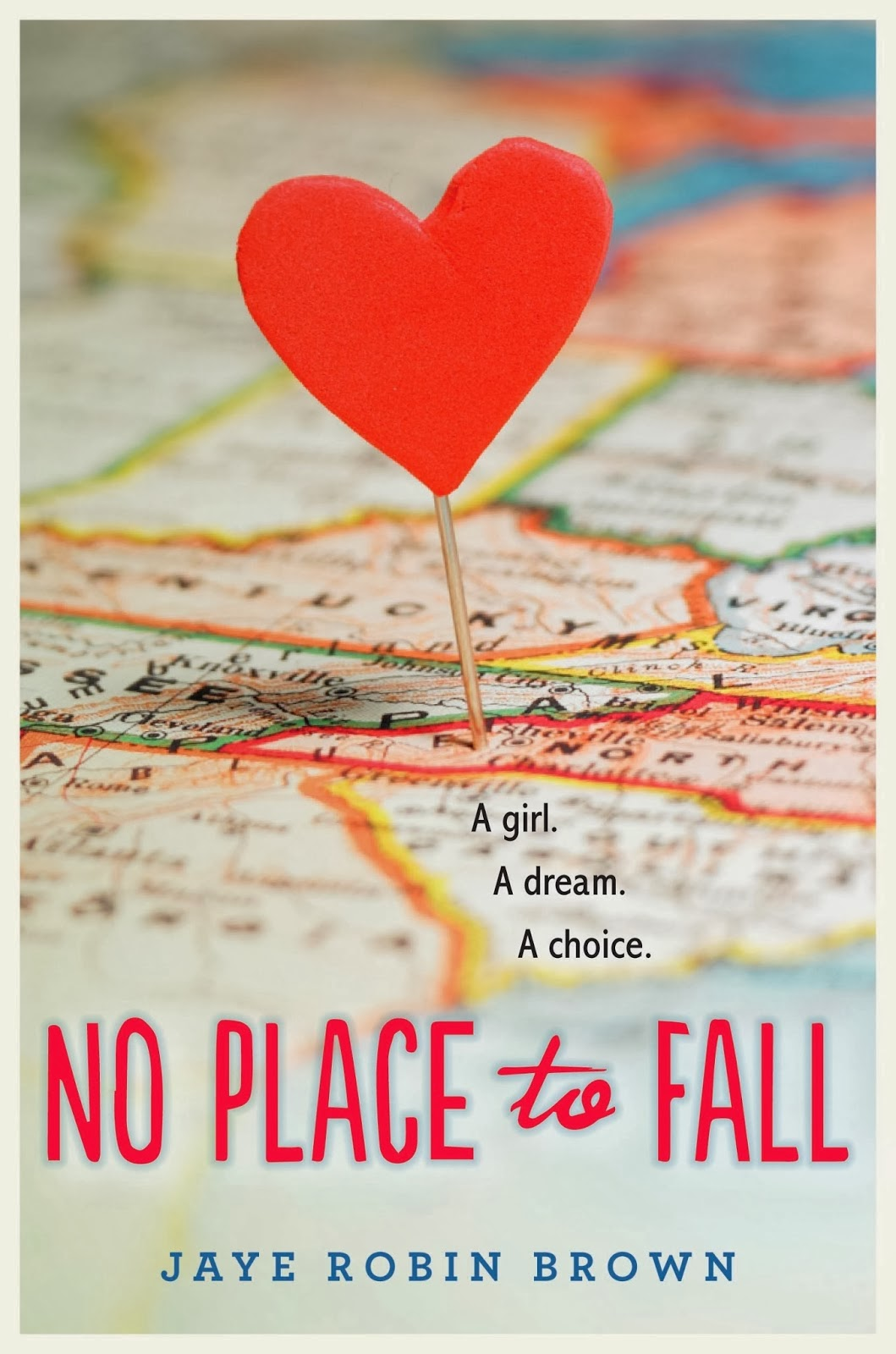 No Place to Fall by Jaye Robin Brown  Amazon  |  Goodreads