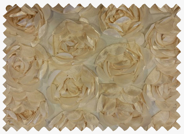 cabbage-rose-champagne.jpg