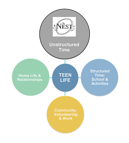 SLP NEST will be a place for students to create and explore many of the 40 developmental assets so critical to becoming healthy, contributing adults. St. Louis Park has embraced the developmental assets for decades.   SLP NEST will provide opportunities for cultural competence, planning, decision-making, resistance skills, interpersonal competence, peaceful conflict resolution, personal power, self-esteem, sense of purpose and a positive view of a personal future. It will also be a space for personal growth and development — too rare in our over-scheduled, over-stressed and over-structured lives  PLEASE help their mission by visiting the NEST and donating to it! It is going to be a great flight!