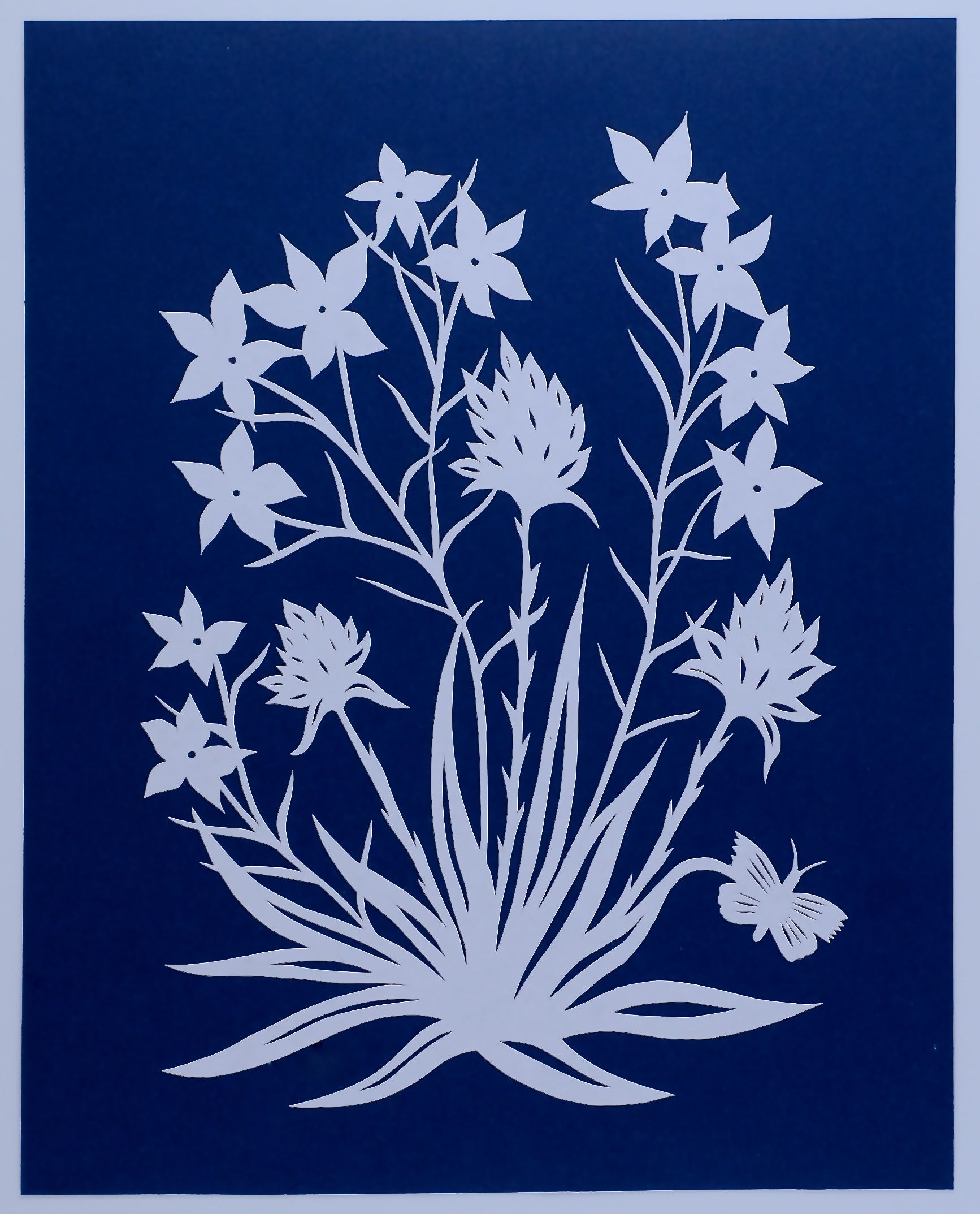 Wildflowers:White on Blue.jpg