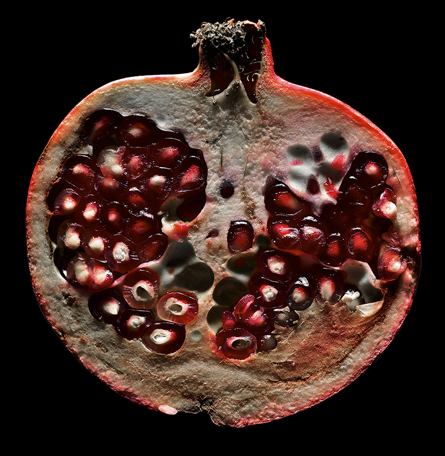 AU_Pomegranate_0712.jpg