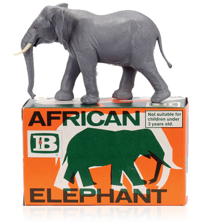 paul-farrell-elephant.png