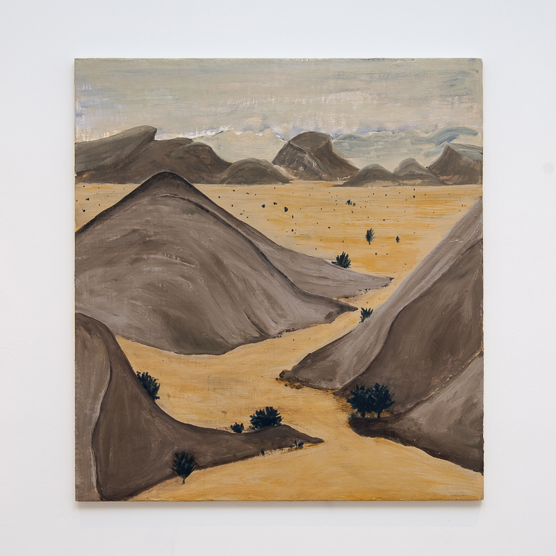 Travel Special - Ultimate Sahara, 2007 Oil and pigment on gesso panel 65 x 60 cm 25 5/8 x 23 5/8 in HSI0006  ENQUIRE ABOUT THIS WORK