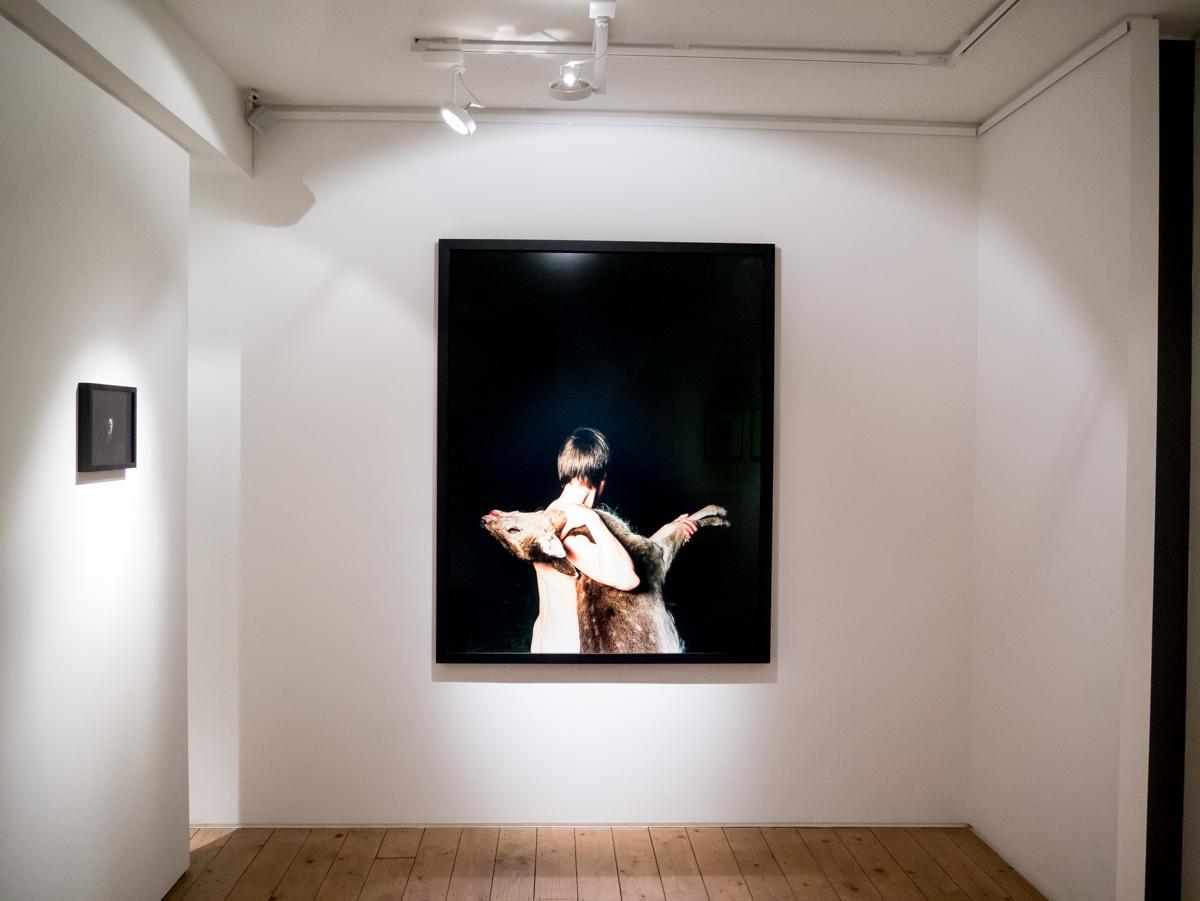 Andrew Bruce Illuminating Silence Installation-2.jpg