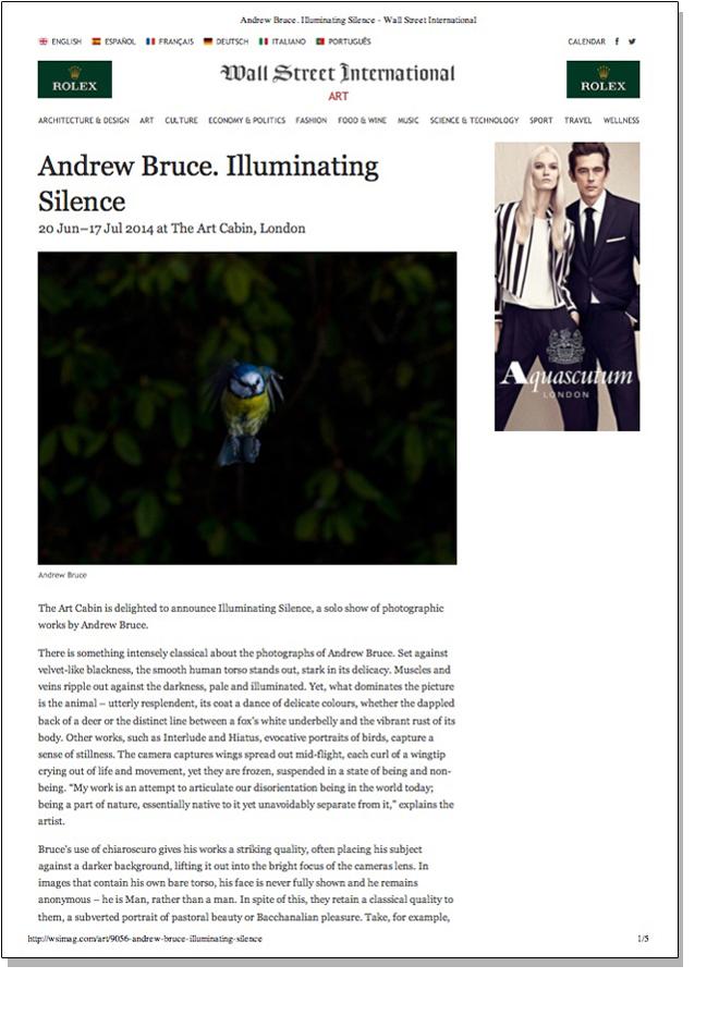 ANDREW BRUCE ILLUMINATING SILENCE   Wall Street International   June 2014