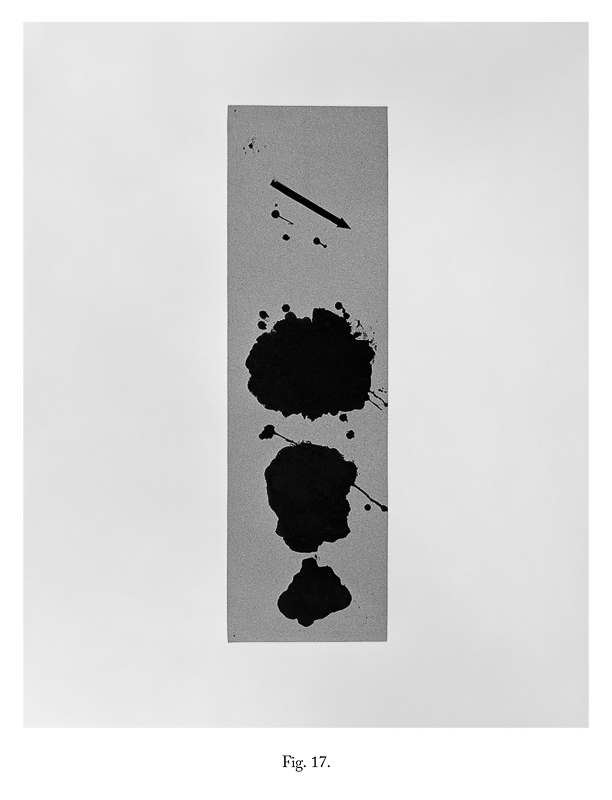 Fig 17, 2012 From the series As IF It Were Bromide Print (Framed) 30.5 x 25.4 cm 12 x 10 in VJE0008  ENQUIRE ABOUT THIS WORK