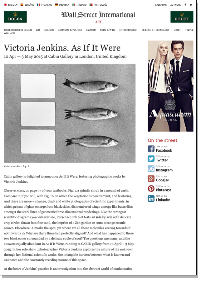VICTORIA JENKINS AS IF IT WERE   Wall Street International   April 2015
