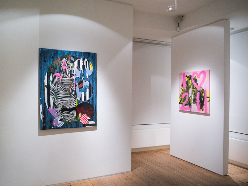 Tina Jenkins Transplastic exhibition at CABIN gallery curated by Joe Madeira-8.jpg