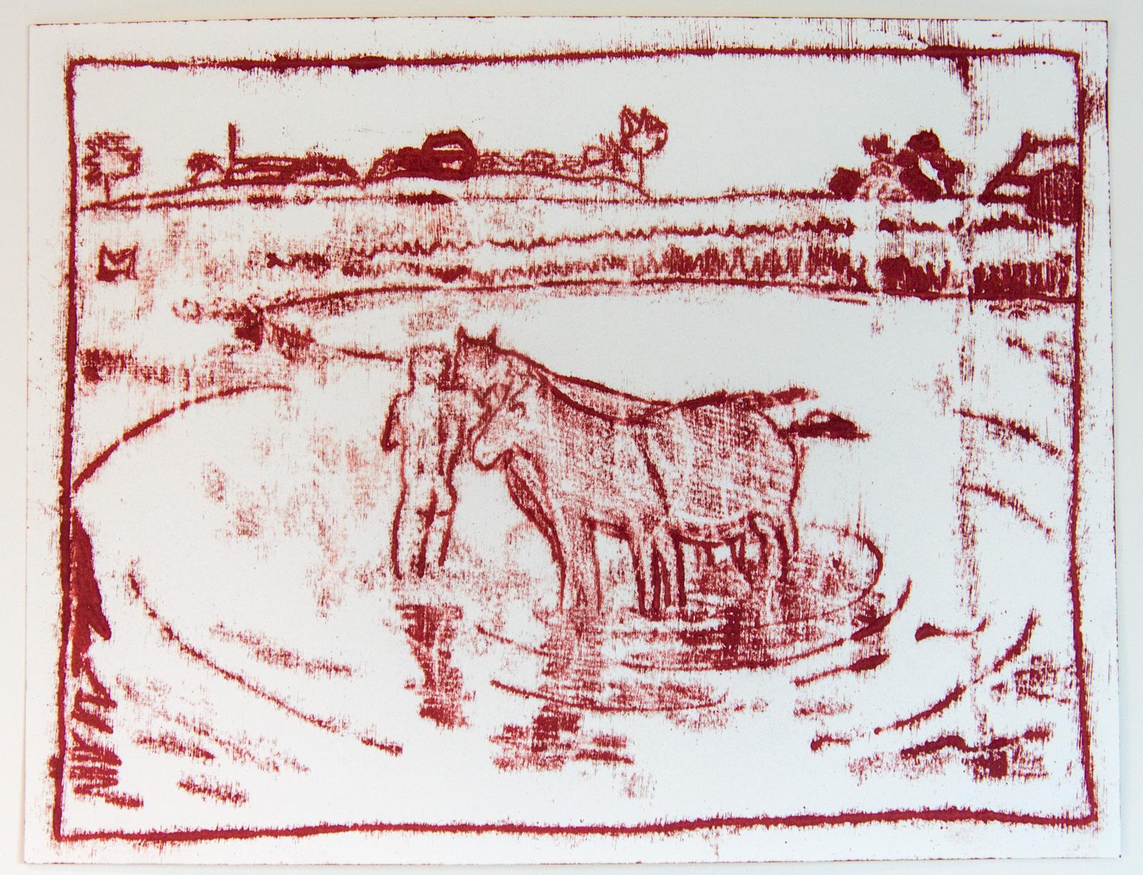 Horse Washing