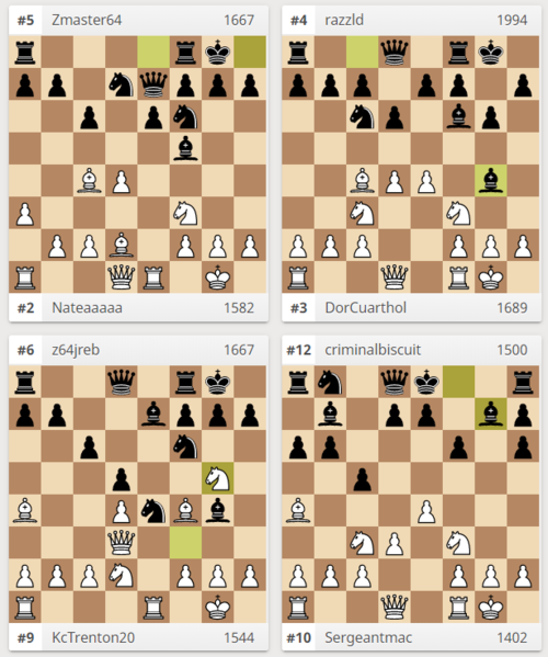 chess pic adult 2.PNG