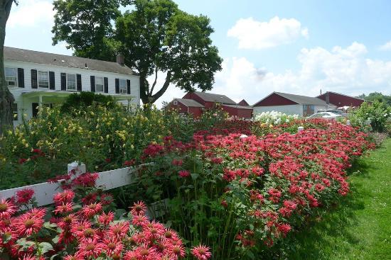 Terhune Orchards - Princeton, NJ