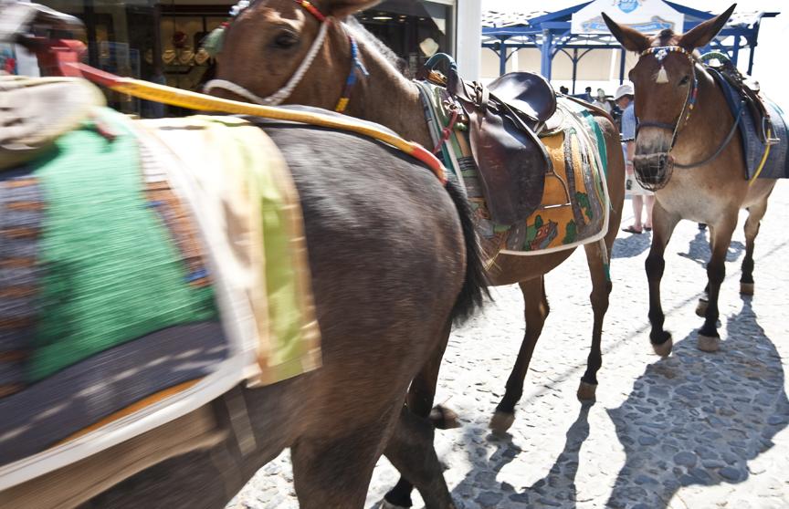 website_travel_greece12.jpg