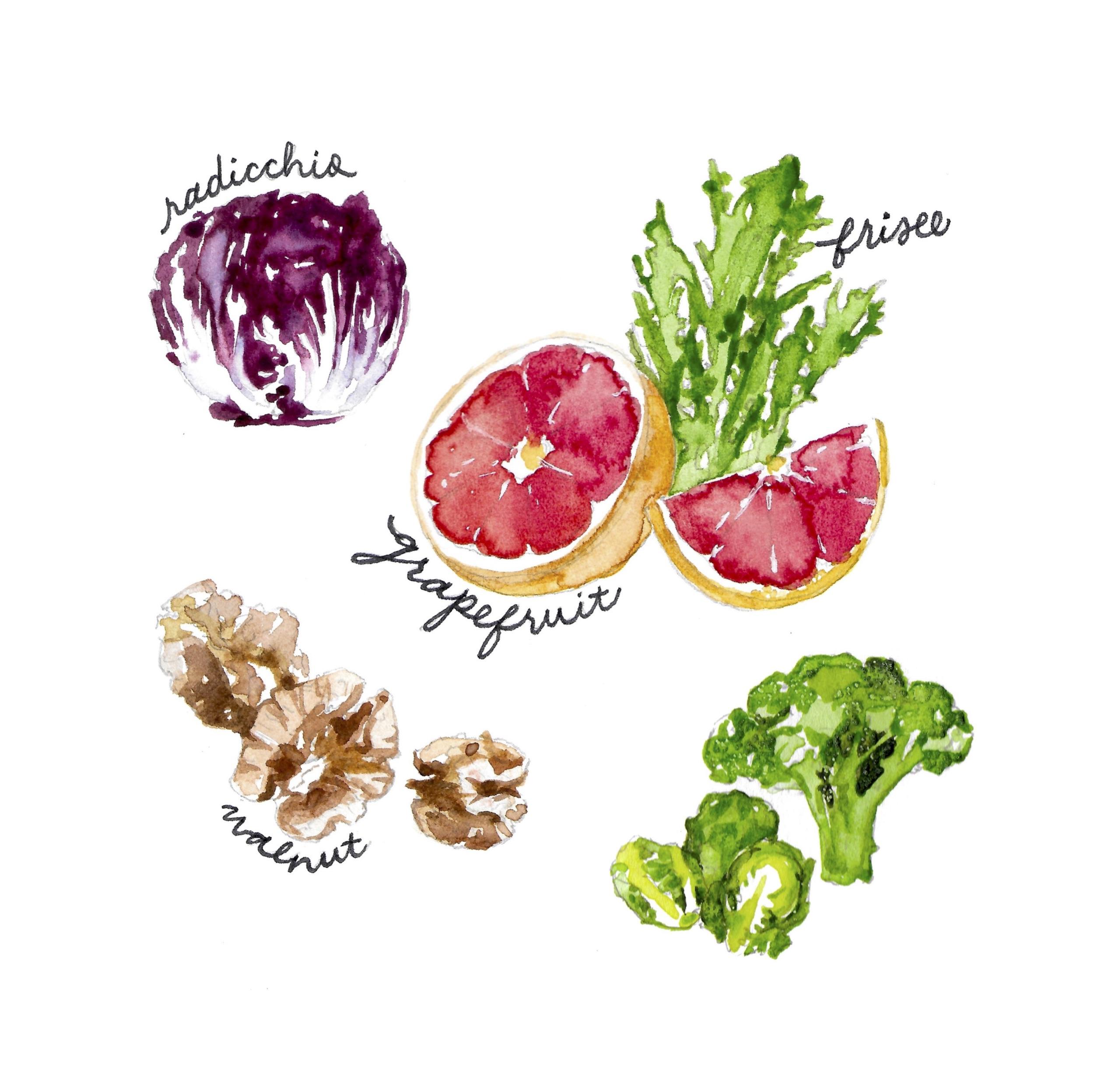 Sharon Teuscher Food Illustration.jpg