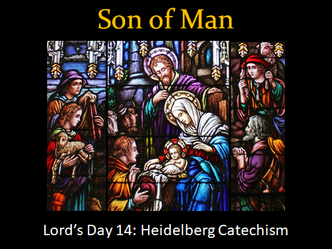 02-11-2018 Son of Man.png