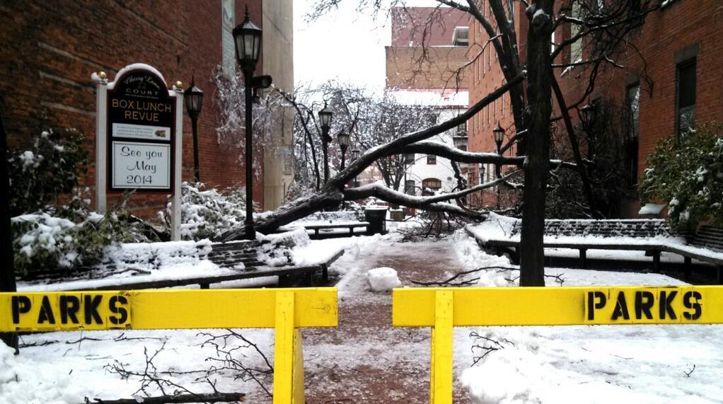 0206_NWS_SP-ice-gallery.jpg