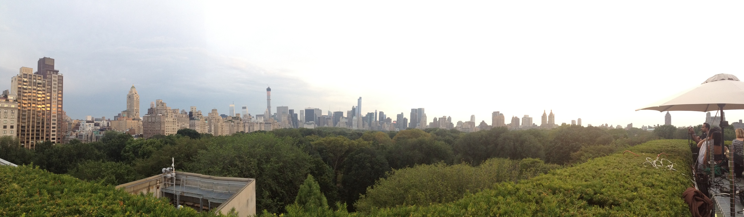 Panorama view from the top of the Metropolitan Museum of Art