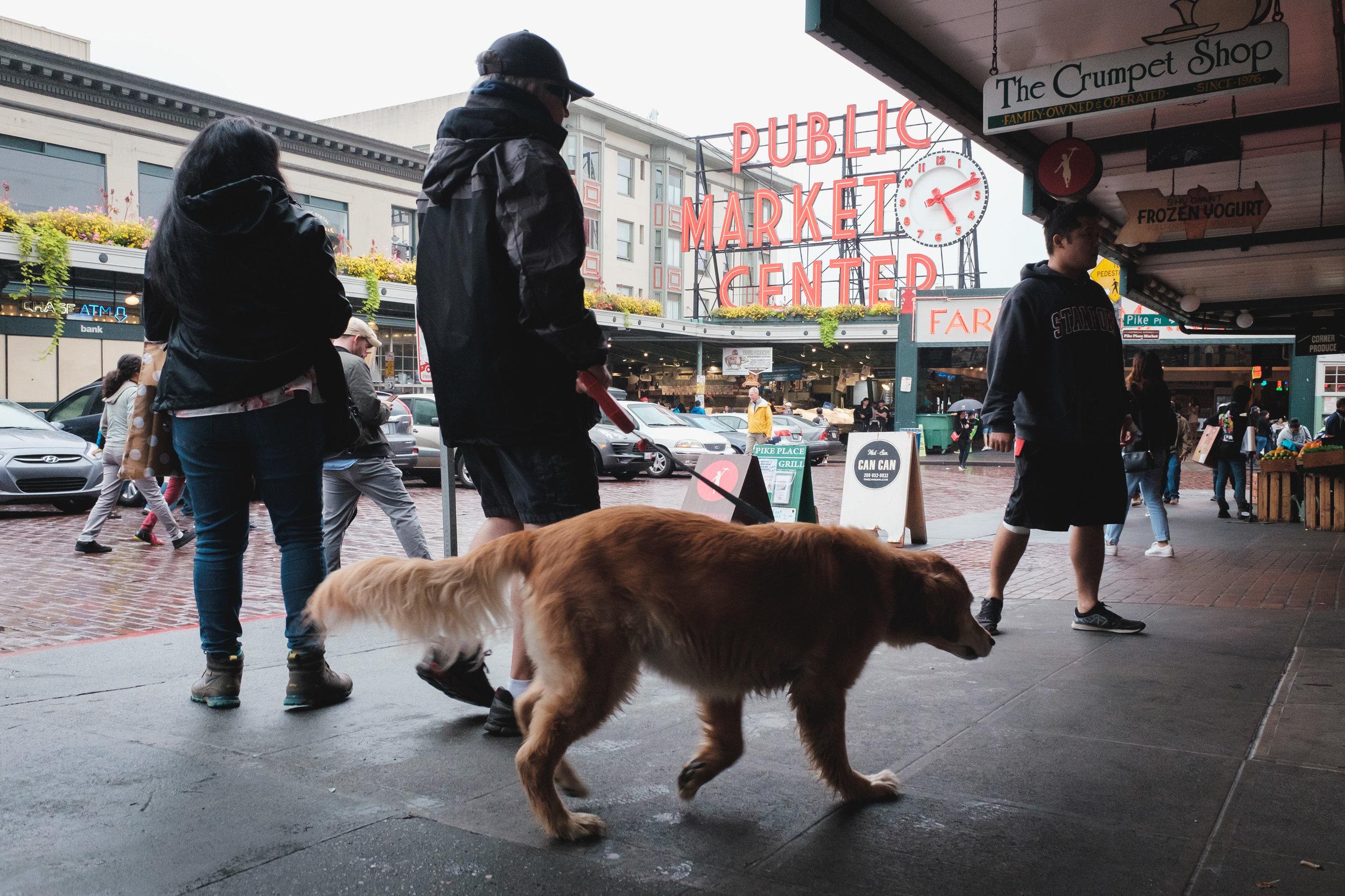 Seattle, Washington - Travel Photos / September, 2017