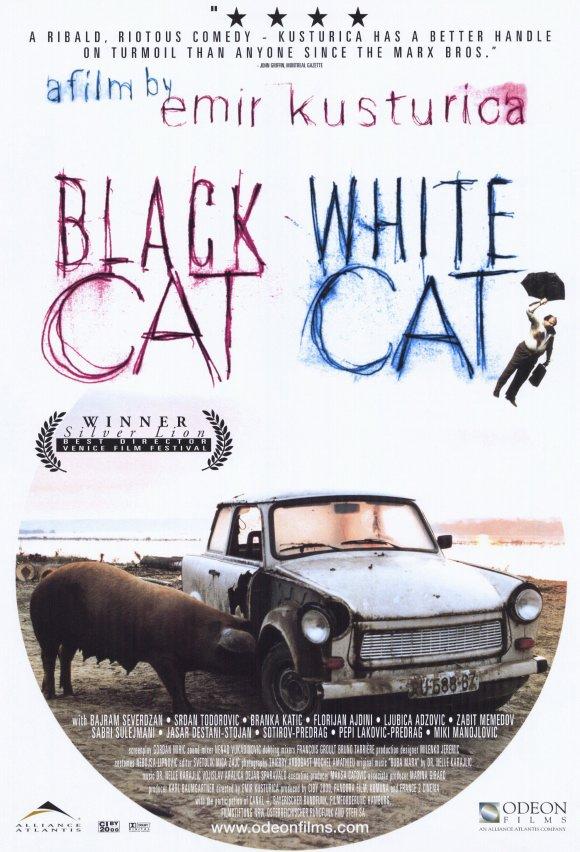 black-cat-white-cat-movie-poster-1998-1020203431.jpg