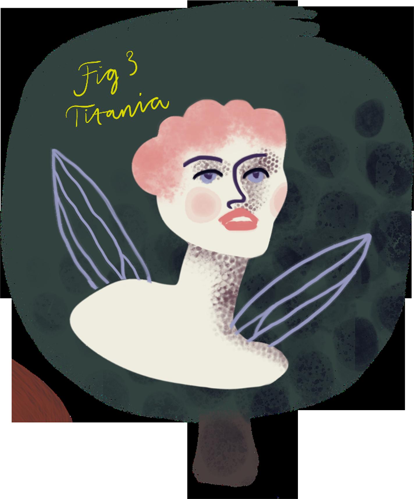 Titania. By Kate England.