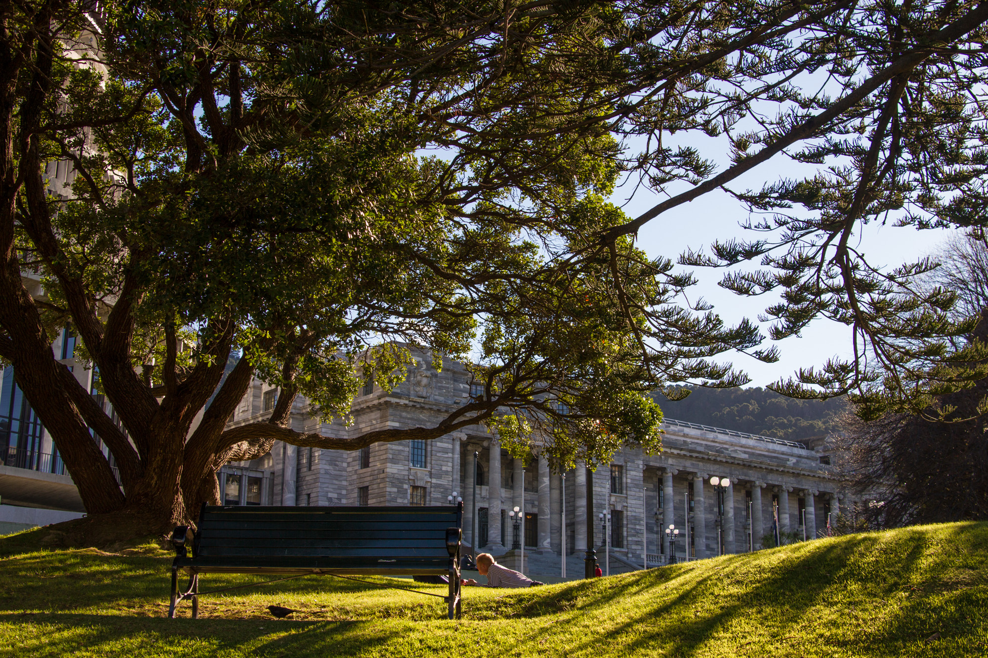 Wellington_NZ_22.jpg
