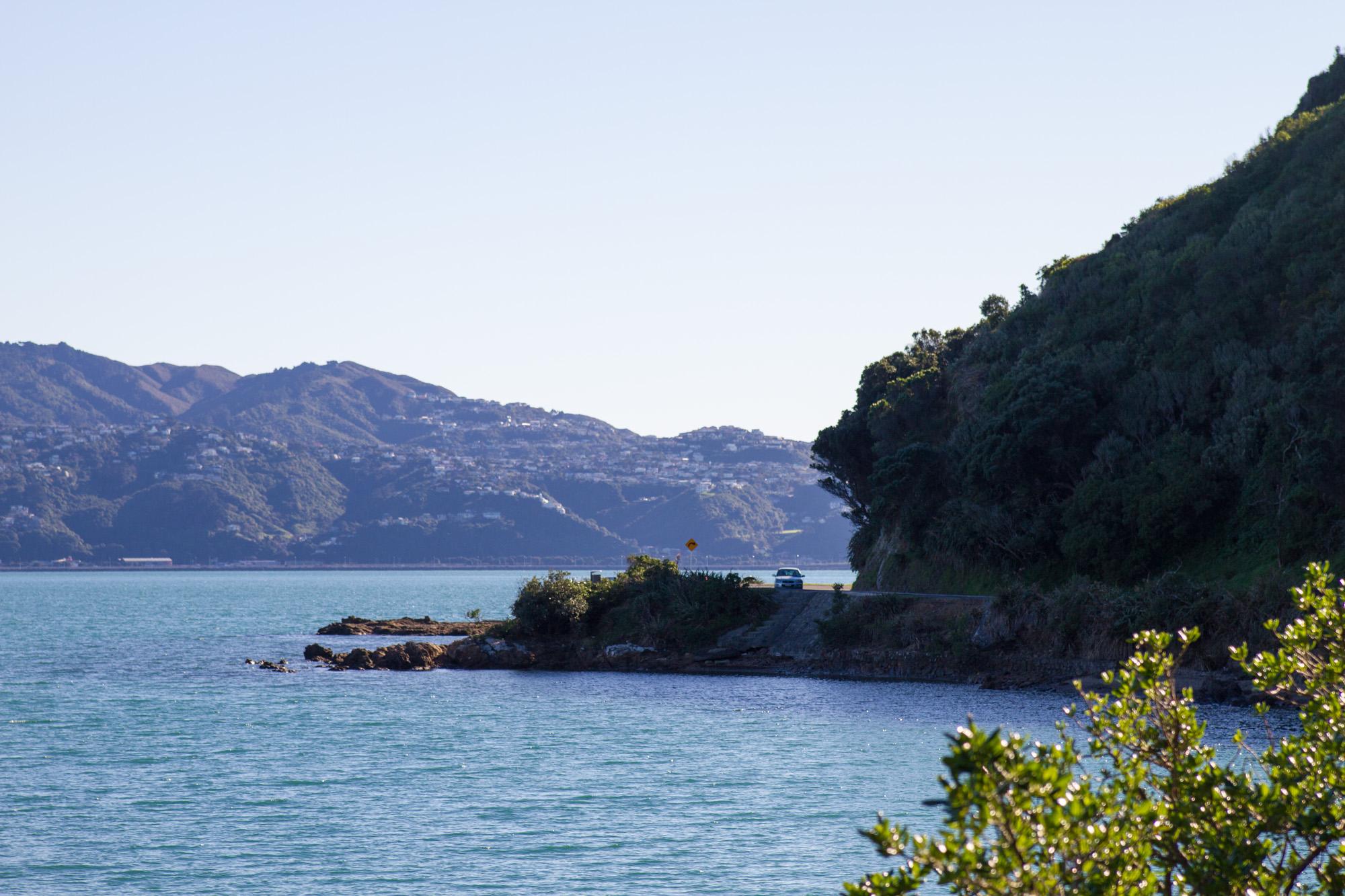 Wellington_NZ_34.jpg