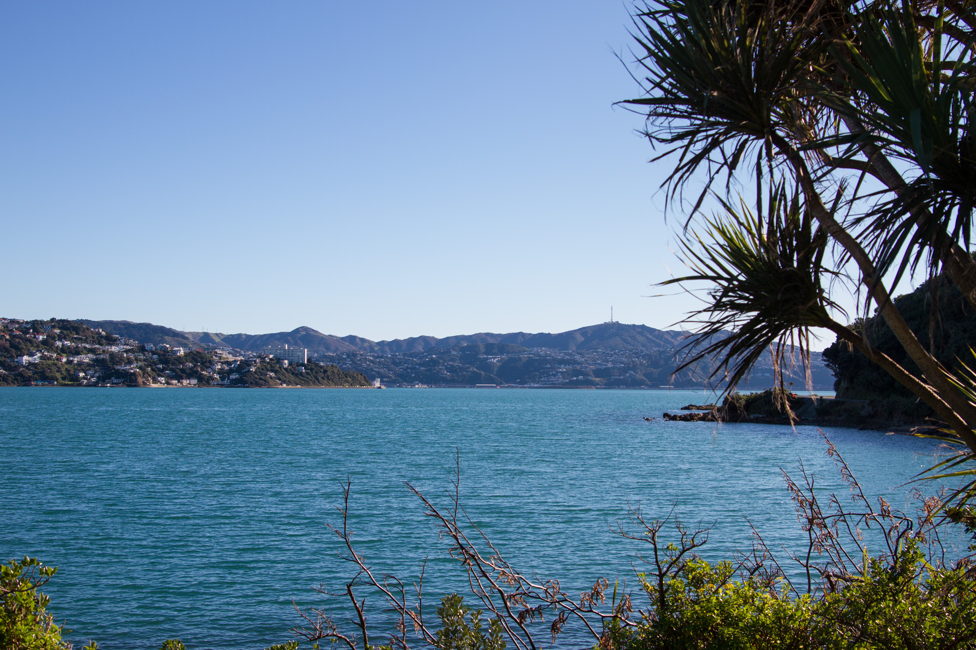 Wellington_NZ_35.jpg