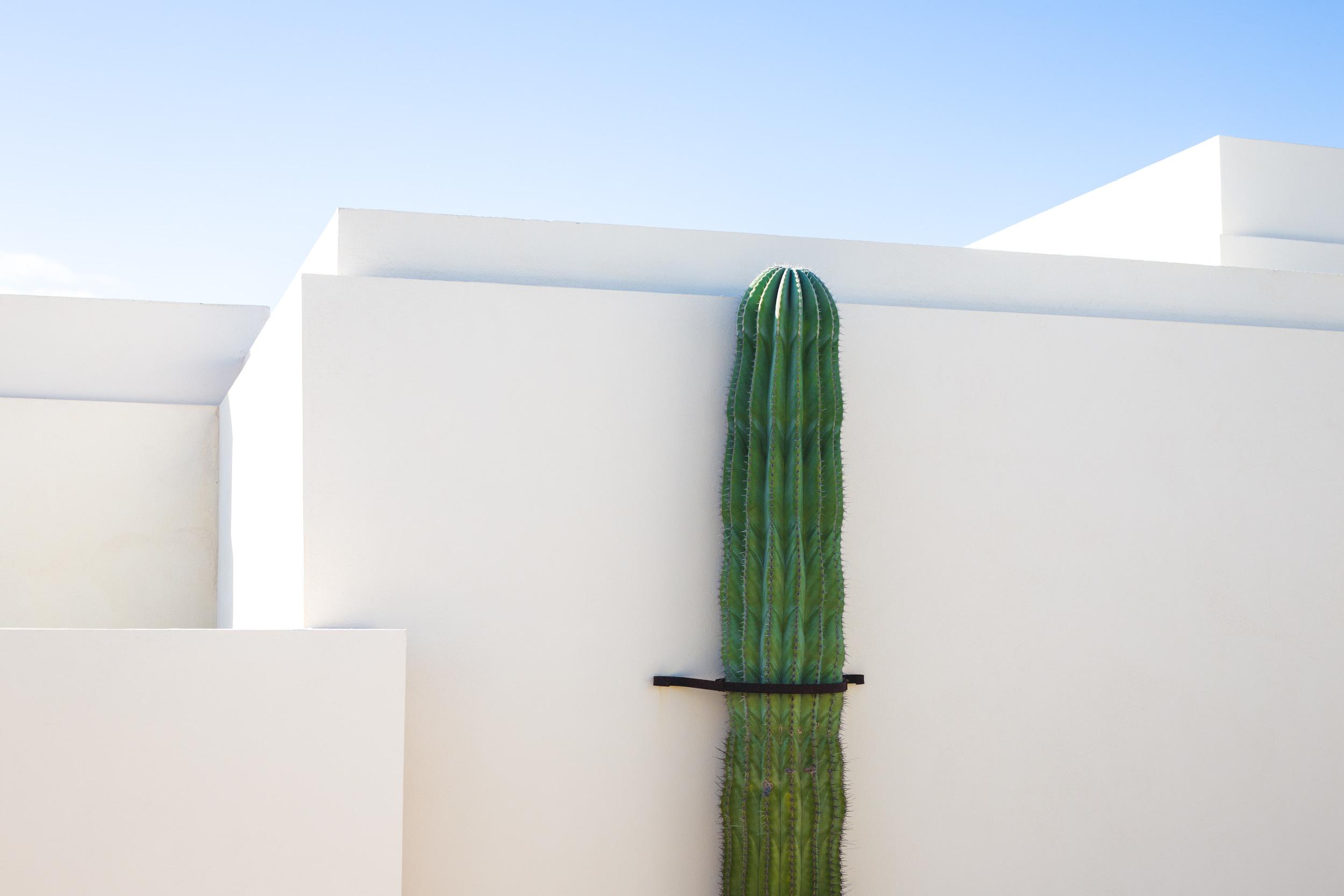 Lanzarote March 16-14.jpg