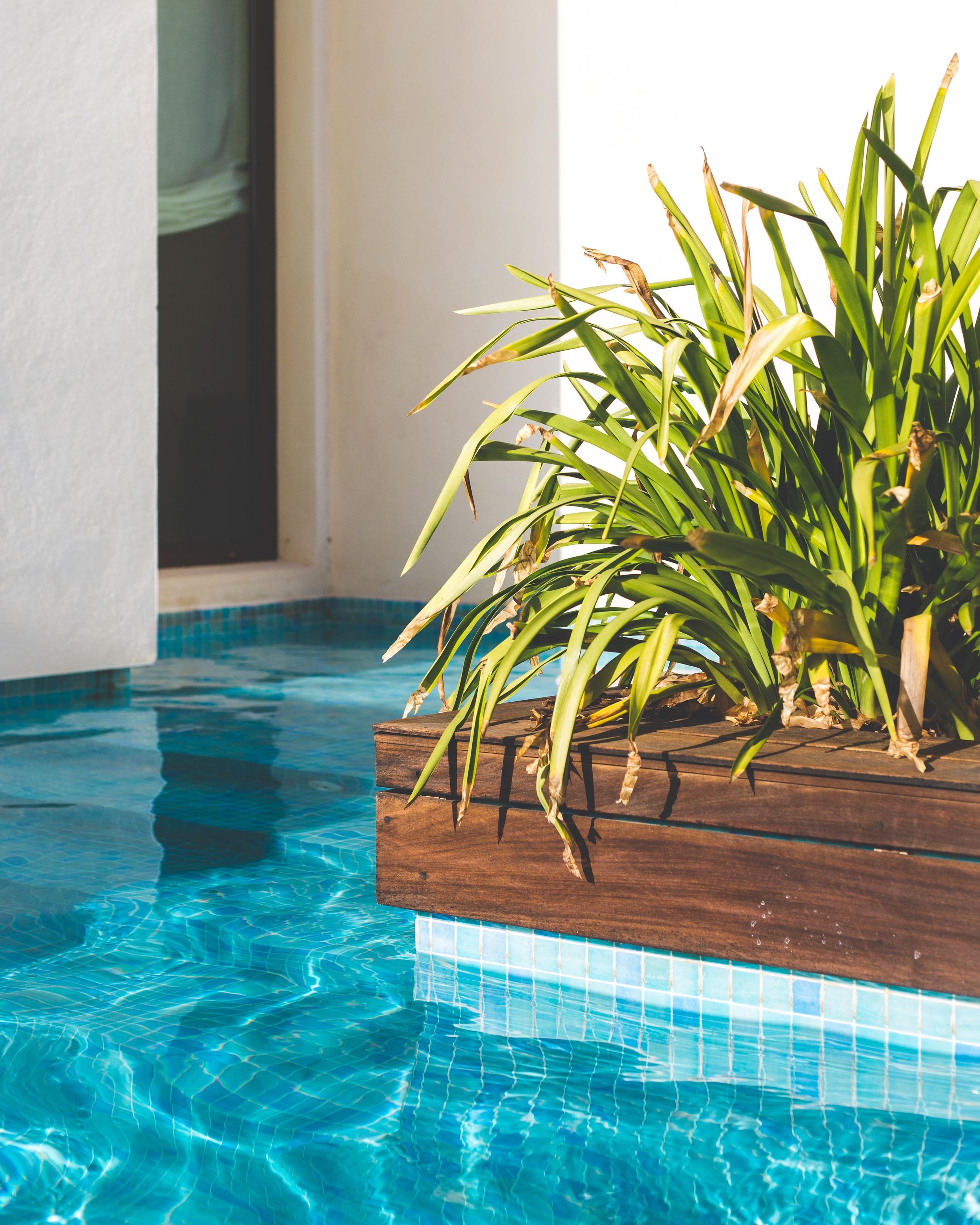 Lanzarote March 16-4.1.jpg