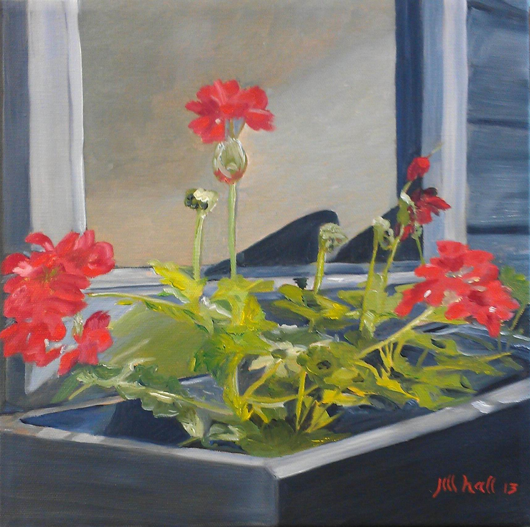 Jill's Geraniums - 12x12