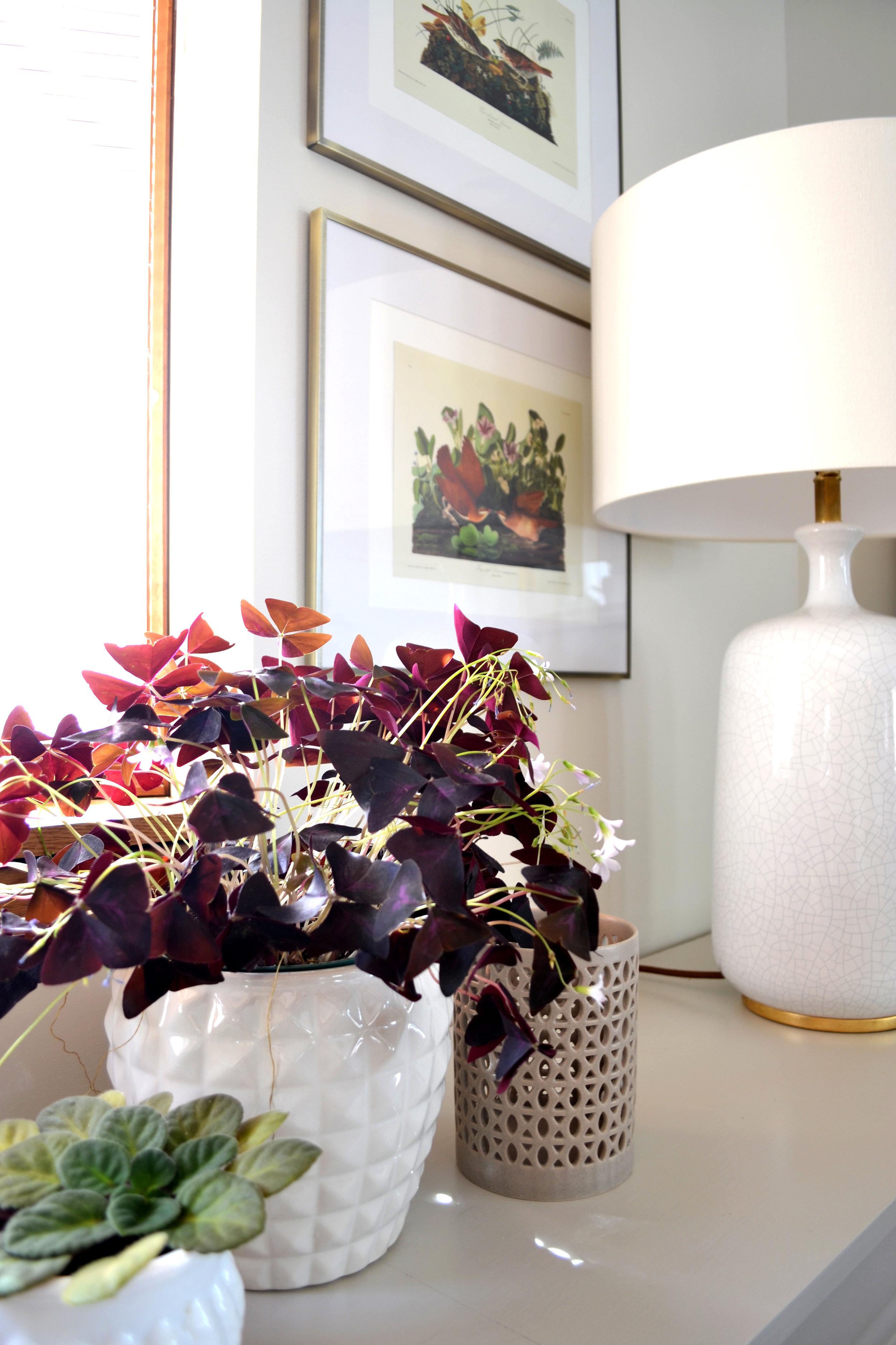Lakeview Family Room - Rehabitat