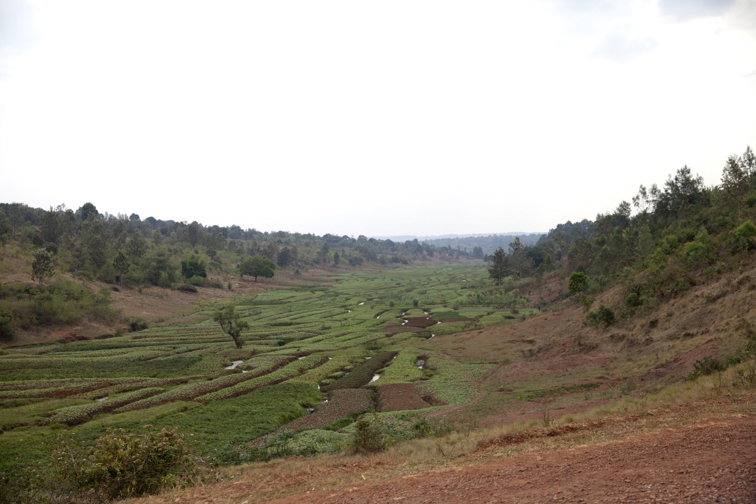 Muyinga_Province_001.jpg