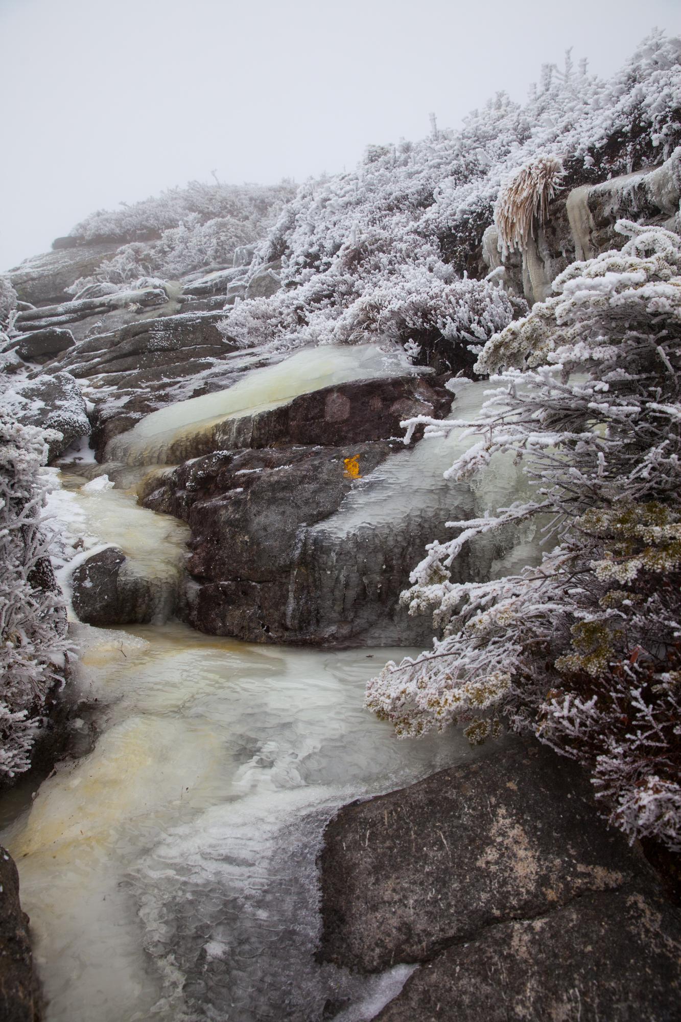 Mount Colden Ascent