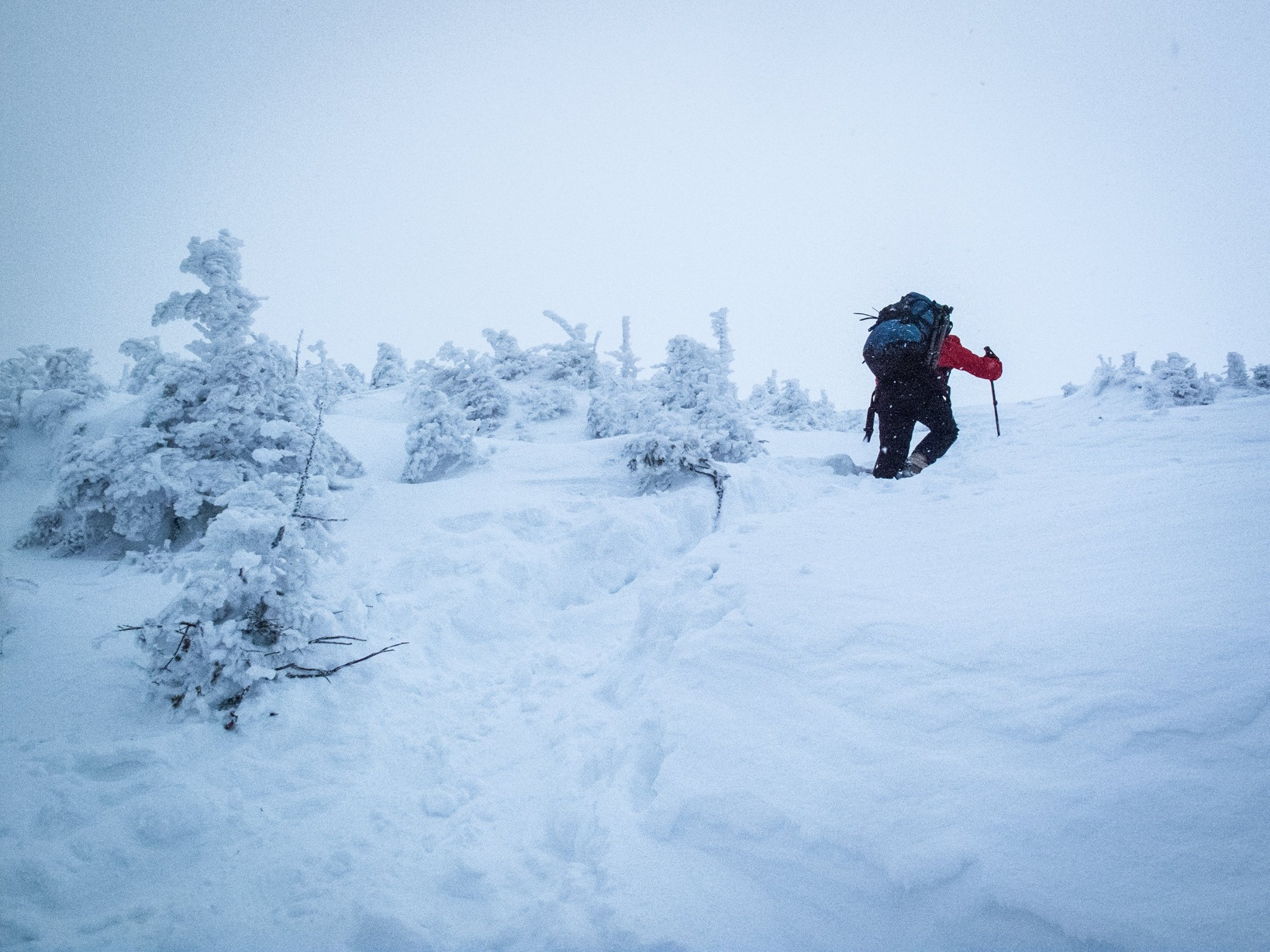 Nearing the peak of Algonquin. Photo by Jeff Berry.