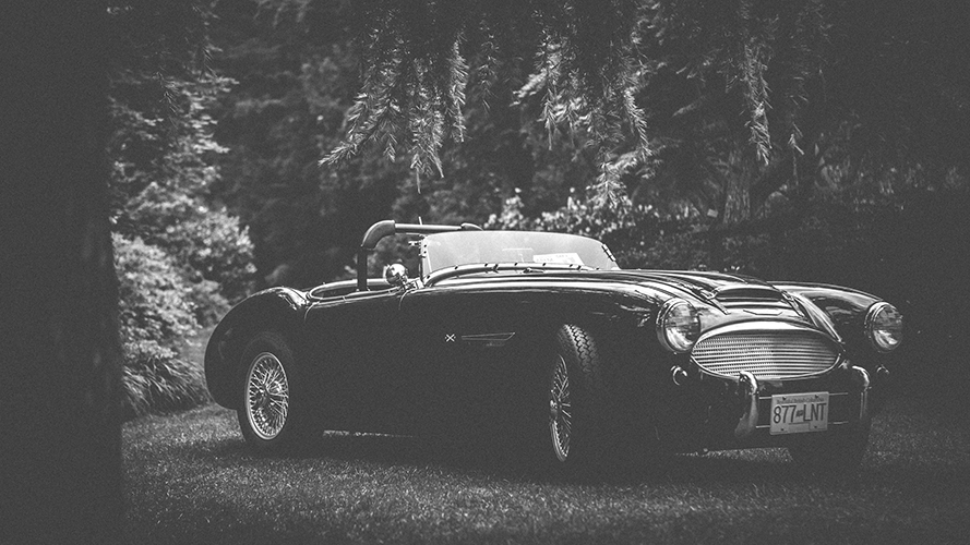 -Lone Austin-Healey enjoying the shade
