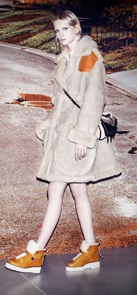 shearling coat.jpeg