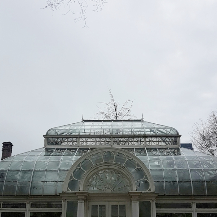 Allan Gardens Conservatory is a stone's throw away from Holiday Inn on Carlton